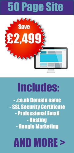 50 page web design london