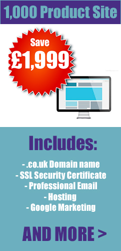 501-1000 product ecommerce web design london